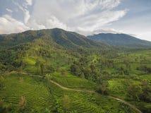 Горный вид, Bogor, Индонезия стоковая фотография