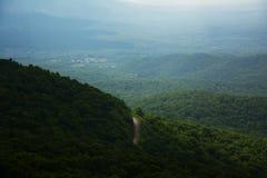 Горный вид и дорога леса Стоковые Фото