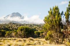 Горный вид Килиманджаро Стоковая Фотография