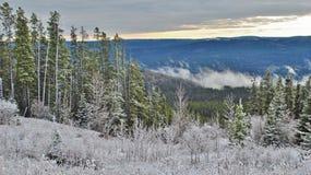 Горный вид от верхней части в Альберте Канаде Стоковое Фото
