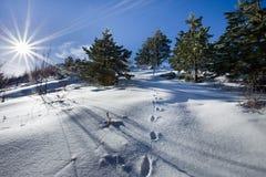 Горный пик в снеге Стоковая Фотография