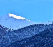 Горный пик леса ландшафта зимы стоковое изображение rf