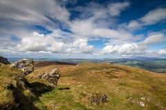 Горный склон в Ирландии Стоковые Изображения