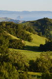 Горный склон зеленого цвета Калифорнии Стоковая Фотография
