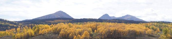Горный склон осины осени Стоковое фото RF