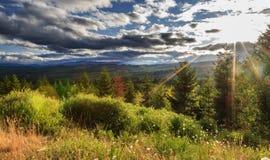 горный склон солнечный Стоковые Изображения