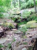 Горный склон утеса Стоковая Фотография RF