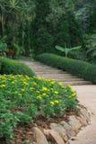 Горный склон цветочного сада Стоковые Изображения