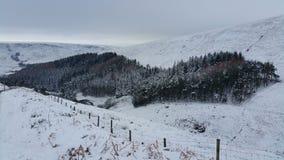 Горный склон Snowy Стоковые Изображения