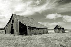 городок Орегона привидения Стоковые Фото