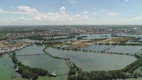 Городок среди воды в мангровах сток-видео