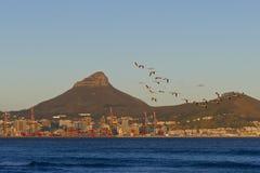 городок таблицы горы плащи-накидк Африки южный стоковое фото