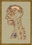 городок человека анатомирования Стоковое Изображение