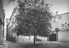 Городок Agde старый стоковые фотографии rf