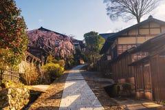 Городок juku Magome с Сакурой, долиной Kiso стоковое фото