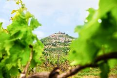 Городок Motovun сценарного взгляда известный в регионе Istria, около Rovinj роскошное назначение перемещения в Хорватии, Европе С стоковые фото