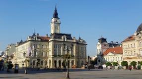 Городская ратуша на квадрате свободы в центре Novi грустном стоковые фотографии rf