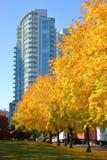 Городской пейзаж города Ванкувера Стоковое Изображение
