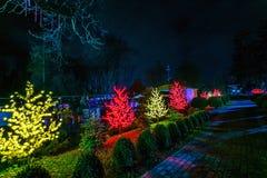 Городской пейзаж и освещение ночи в парке атракционов Стоковое фото RF
