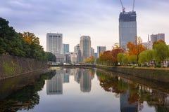 Городской пейзаж токио с осенним парком Стоковые Изображения RF