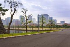 Городской пейзаж токио с осенним парком Стоковая Фотография RF