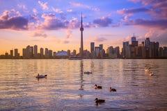 Городской пейзаж Торонто с цветом отражения ярким Стоковая Фотография RF