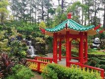Город ботанический Garde Baguio стоковое изображение