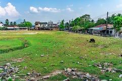 Город вполне ухудшения и загрязнения которое причинено людьми стоковое изображение