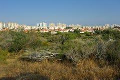 город Израиль ashkelon стоковое фото rf