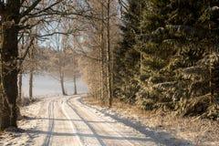 город около железнодорожной дороги светит солнцу снежка к древесине зимы Стоковая Фотография RF