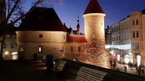 Город освещает старые vitrines покупок Эстонии панорамы Таллина стоковое изображение