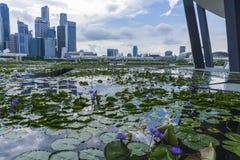 Город Сингапура в течение дня Стоковое Изображение