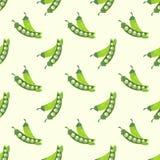 Горох безшовной текстуры акварели фонового изображения красочной vegetable зеленый Стоковые Фото