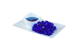 Горох цветет чай на белой предпосылке стоковое фото