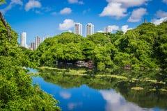 Города Бразилии - Ресифи Стоковое Изображение RF