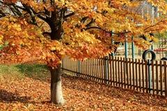 Город в осени Стоковое Фото