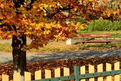 Город в осени Стоковые Фотографии RF