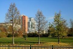 Город в осени Стоковая Фотография RF
