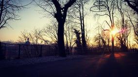 Город и солнце Стоковое Изображение