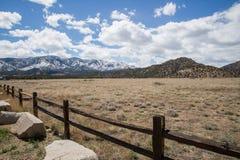 Город Колорадо канона каньона виска парка экологичности Стоковая Фотография
