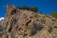 Город Колорадо канона каньона виска парка экологичности Стоковые Изображения RF