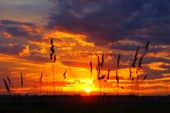город над заходом солнца Стоковое Изображение RF
