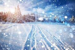 город около железнодорожной дороги светит солнцу снежка к древесине зимы Красивая иллюстрация высоко-res цвета с holida стоковые фото