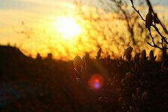 городок захода солнца sim гор ural Стоковые Изображения