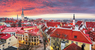 Городок Таллина старый, Эстония стоковая фотография rf