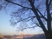 Городок утра, Kamenets-Podolskiy, Украина Стоковые Фотографии RF