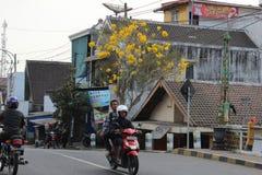 Городок Malang Kepanjen стоковая фотография