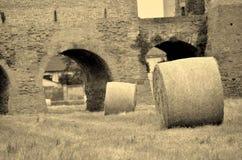 Городок Montagnana средневековый Стоковое Изображение