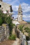 Городок Motovun, istria Стоковые Фото