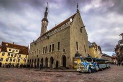 городок tallinn залы эстонии стоковое фото rf